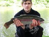 Teich 1 mit Mischbesatz gepachtet  Eine von den eingesetzten Lachsforellen in unserem Angelpark
